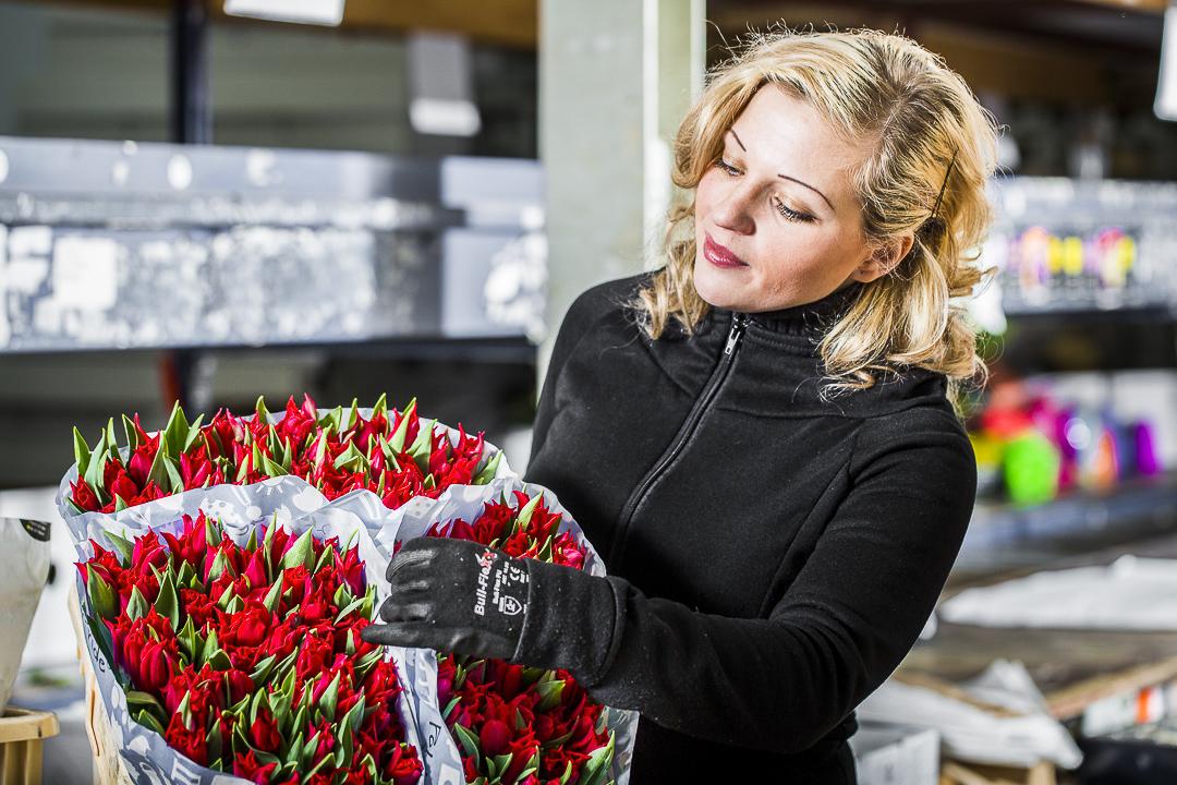 Доставка цветов амстердам москва, оптом